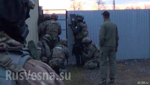 Под Владимиром ликвидировали террористов (ФОТО, ВИДЕО 18+) | Русская весна