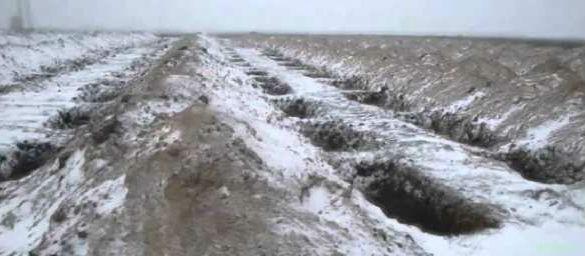 Что будет с Украиной, если она попробует атаковать Крымский мост